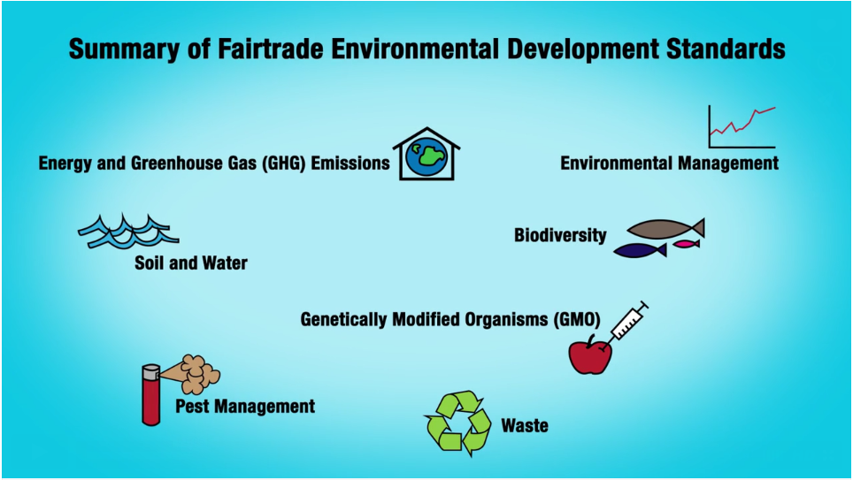 Infographic Fairtrade film
